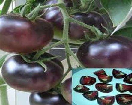 Descrierea varietății de roșii perle negre, caracteristici de cultivare și îngrijire