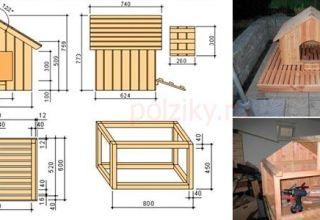 Σχέδια για τη δημιουργία ενός σπιτιού για χήνες και πάπιες με τα χέρια σας, ένα σχέδιο στυλό