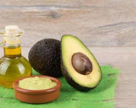 Proprietățile și utilizările uleiului de avocado la domiciliu, beneficii și prejudicii