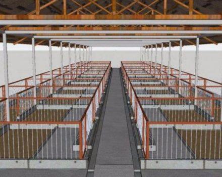 Vaatimukset ja sian suunnittelu 50 päälle, DIY-rakennusvaiheet