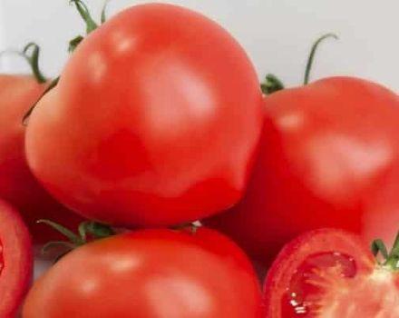 Descripción de la variedad de tomate Azov, recomendaciones de cultivo y cuidado.