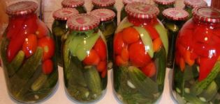 Je možné uchovať uhorky Zozulya na zimu a najlepšie recepty na solenie