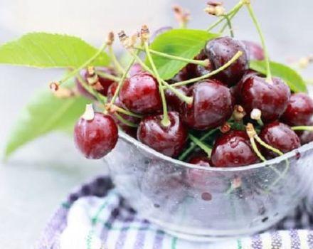 Cum să depozitați corect cireșele acasă într-un apartament și perioada de valabilitate a fructelor de pădure