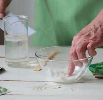 Ist es möglich, Gurken mit Wasserstoffperoxid als Dünger zu besprühen