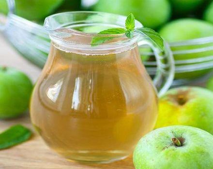 Stapsgewijs recept voor het maken van appelcompote zonder suiker voor de winter