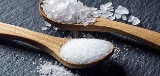 Milyen só jobb az uborka pácolásához télen, egyszerű vagy jódozott