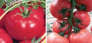 Descripción de la variedad de tomate Turmalina, sus características y rendimiento.