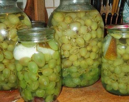 17 mejores recetas para la vendimia de la uva para el invierno en casa