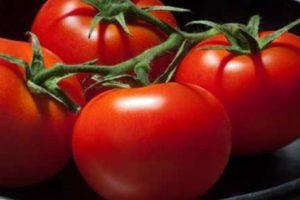 Descripción y características de las variedades de tomate 100 por ciento f1