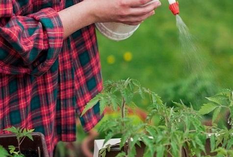 el fertilizante está vertiendo