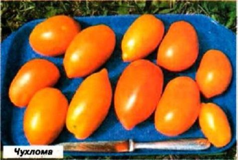 podnos s paradajkami