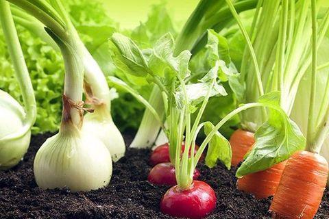 legume alături