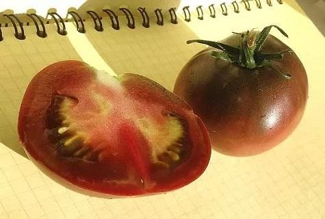 tomate en el bloc de notas
