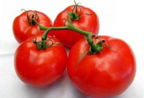 paradajka Catherine na stole