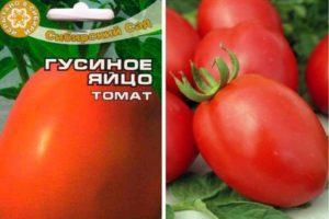 Descripción de la variedad de tomate huevo de gallina y sus características