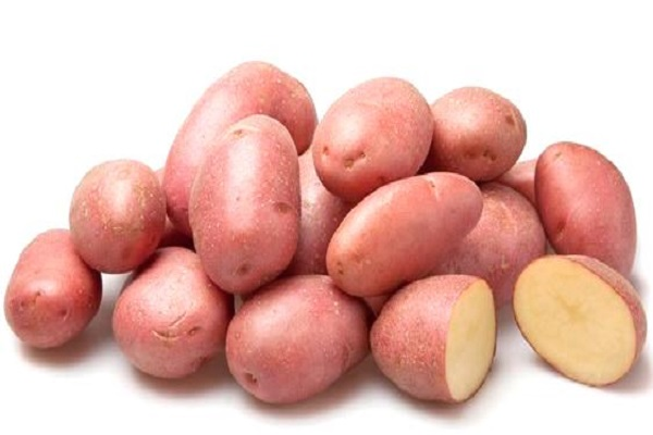 Cartofii Rosar