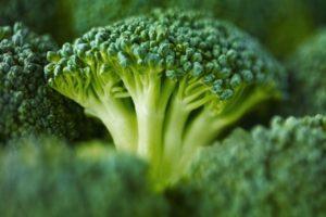 Cele mai bune semințe de broccoli cu descrieri