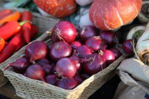 A Carmen hagymafajta leírása, a termesztés és az ápolás jellemzői