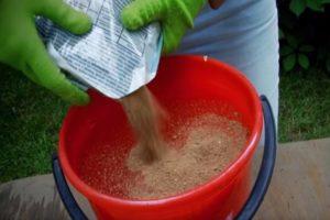 El uso de polvo de tabaco para pepinos, se puede espolvorear