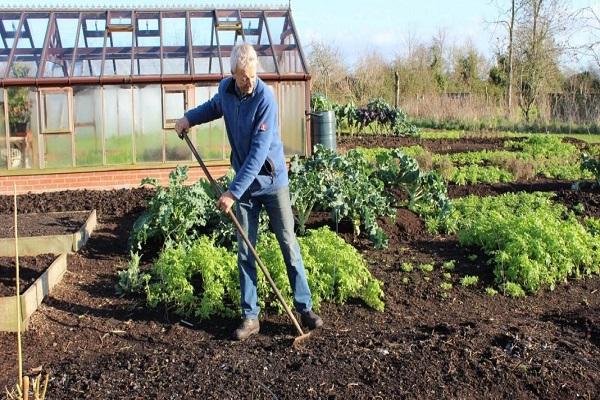 om în grădină