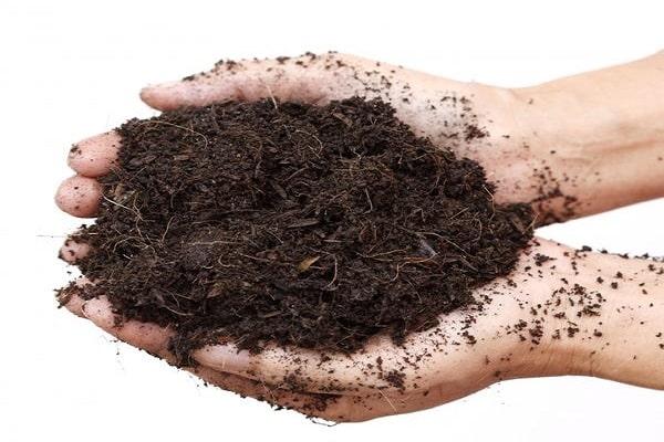 talaj előkészítése