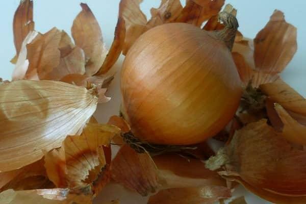 cáscaras de cebolla