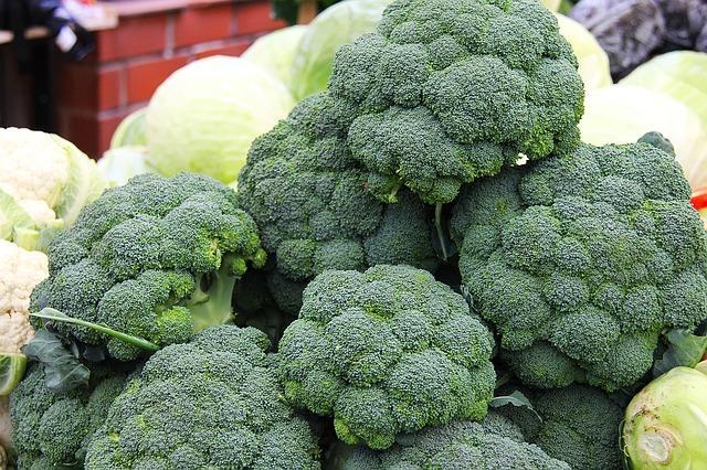 brokolica zelená