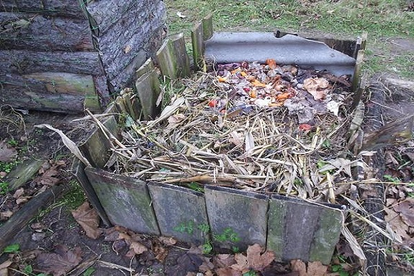 compost de turbă