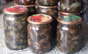 A 10 legfontosabb recept a pajta gombák pácolásához otthon télen