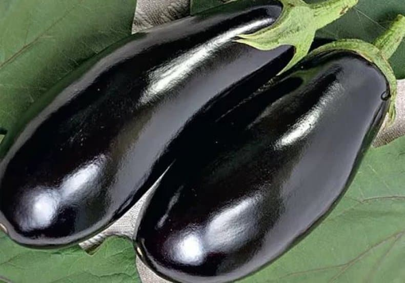 Príncipe Negro