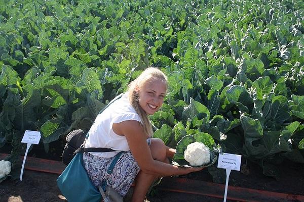 επιθεώρηση από καλλιεργητές λαχανικών
