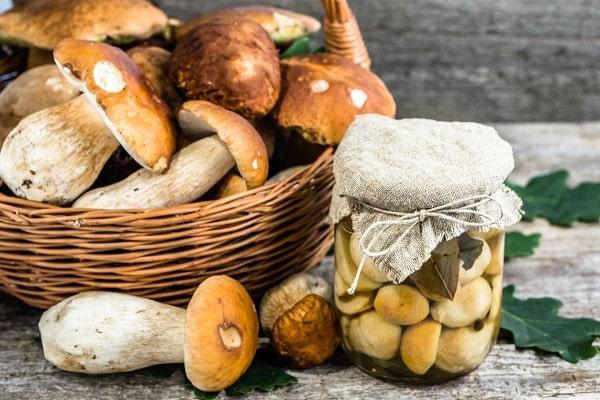 főzés gombák