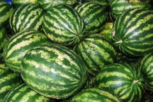 A görögdinnye fajtájának jellemzői és leírása Termelő: termesztés, gyűjtés és tárolás