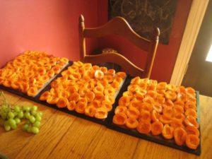 Cómo almacenar correctamente los albaricoques secos en casa.