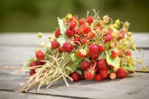 ¿Cómo se pueden conservar las fresas para el invierno sin cocinarlas frescas?
