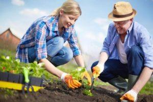 Gardenerov lunárny kalendár výsadby na máj 2020, priaznivé dni