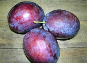Descrierea soiului de prune Președinte, care crește și are grijă de copac