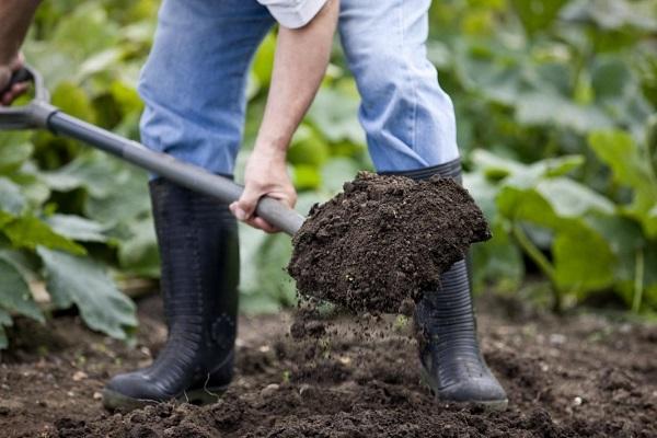 preparación del suelo