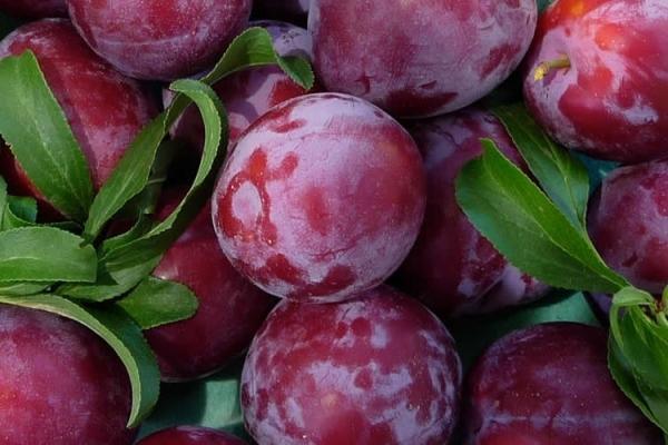 prune de frumusețe
