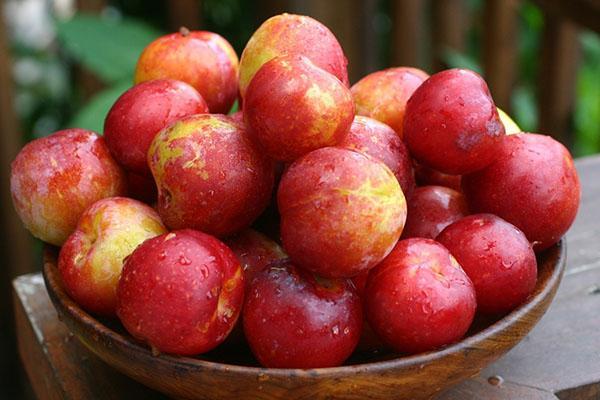 pruna într-un bol