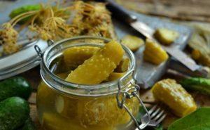 TOP 6 receptov na varenie nakladaných uhoriek v pohári chladným spôsobom na zimu