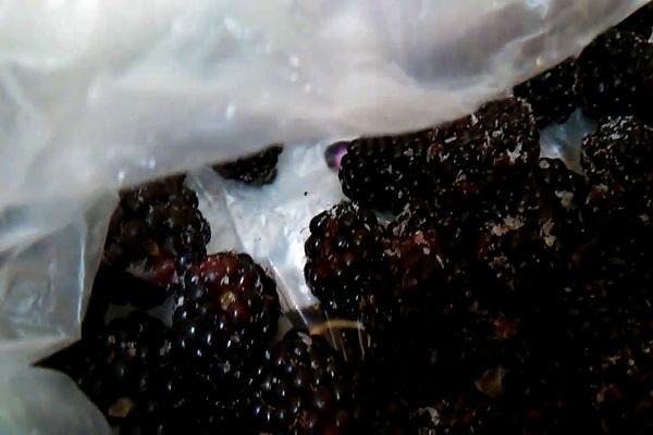 lavar la fruta