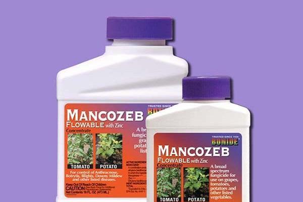 fungicid Mancozeb