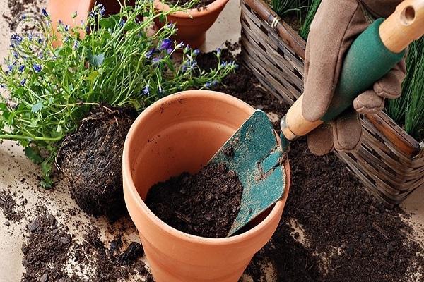 travaux de jardin
