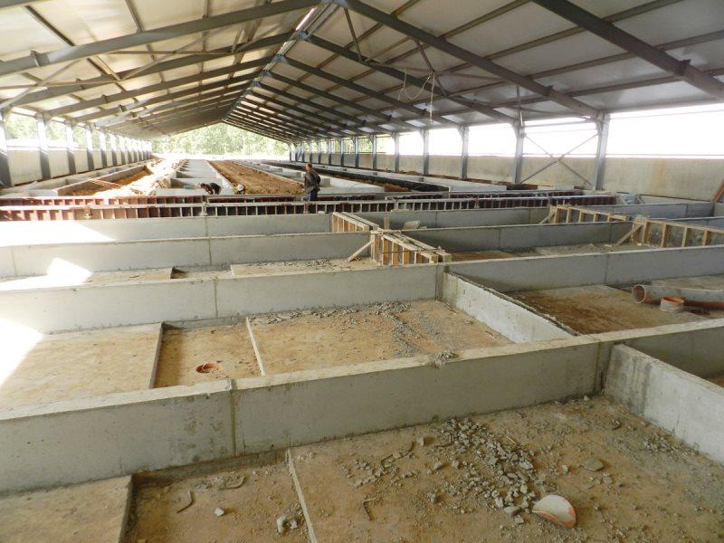 construcție de pigsty