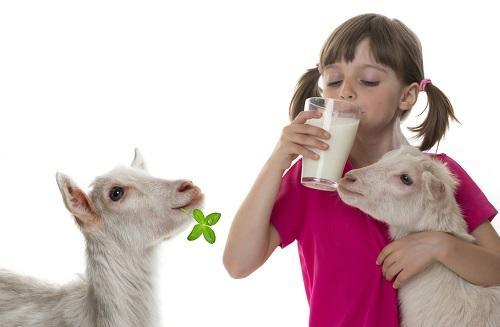 kecske és gyermek