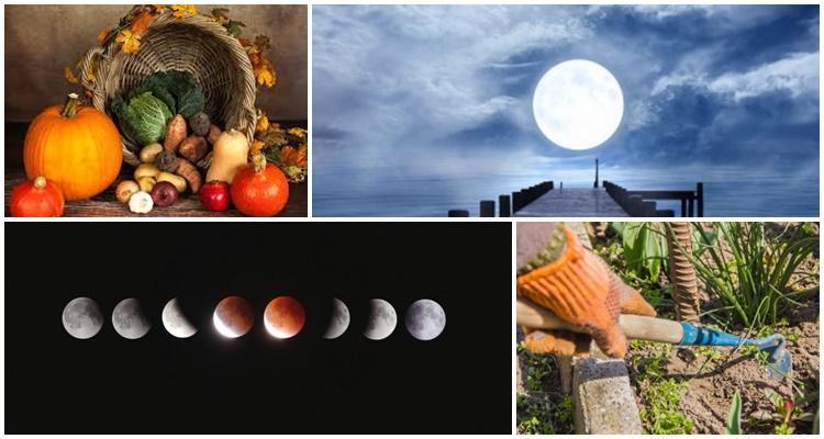 2021-es hold vetési naptár
