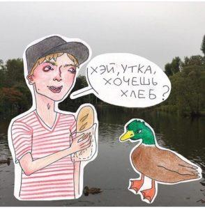 ¿Es posible o no alimentar a los patos con pan, que está permitido y que no está permitido?